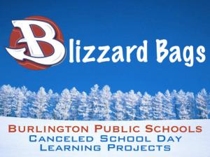 BlizzardBags